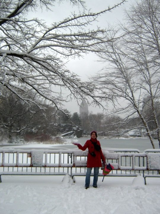 Central Park met 30cm sneeuw