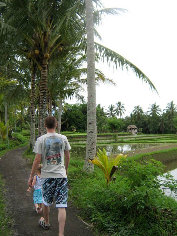 Wandeling tussen de rijstvelden